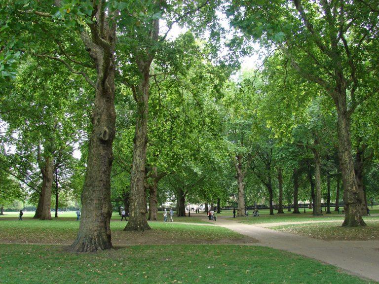 Vivienda define los 44 recintos que integrarán la primera red nacional de parques urbanos