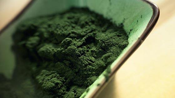 Bisnieto de Gandhi aboga por las algas para mejorar la nutrición