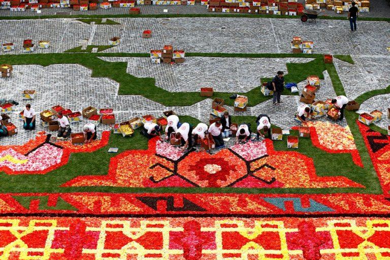 Gigante alfombra de flores hecha con 750.000 begonias en Bruselas