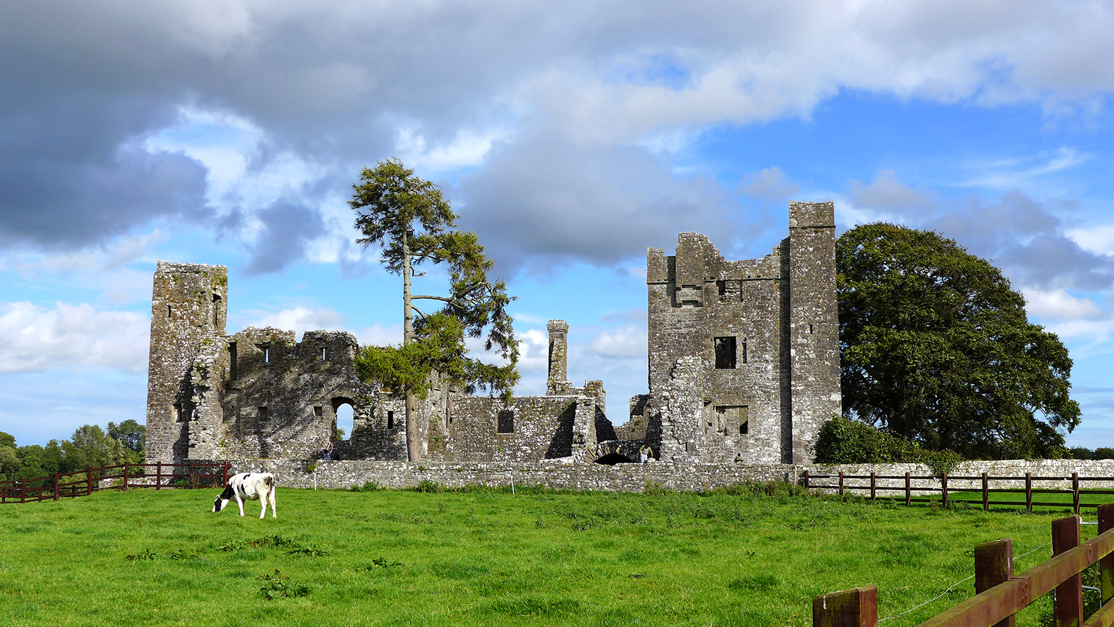 Un Paseo de pélicula por Bective Abbey en Irlanda