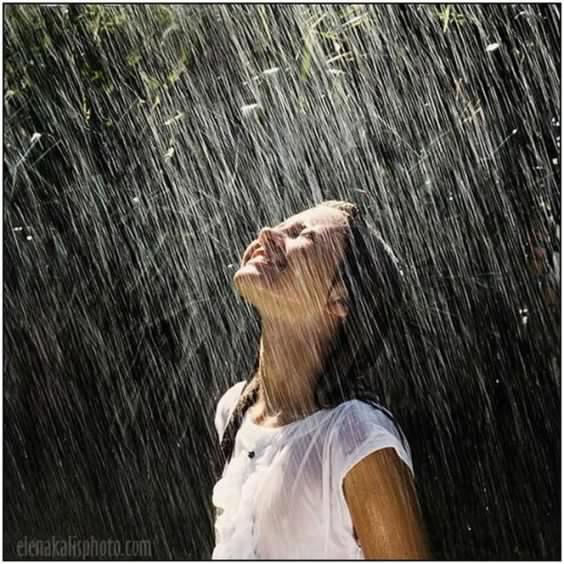 """""""El regreso de la lluvia"""" por Cristian Warnken"""