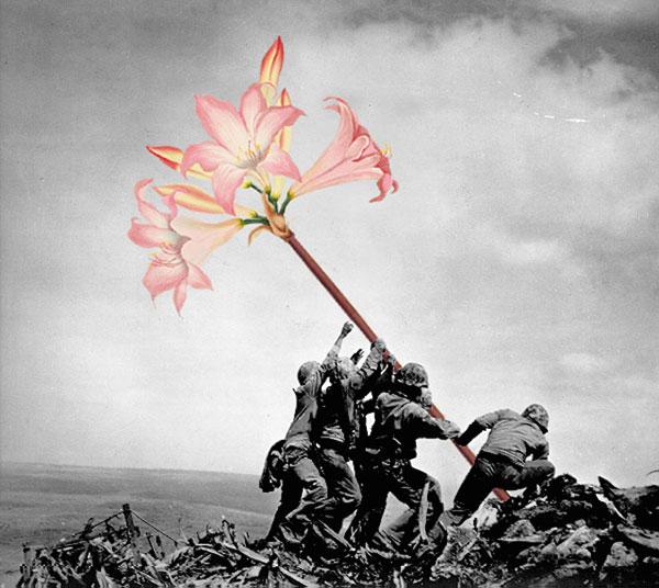 Las flores luchando por cambiar el mundo, collage de Mister Blick