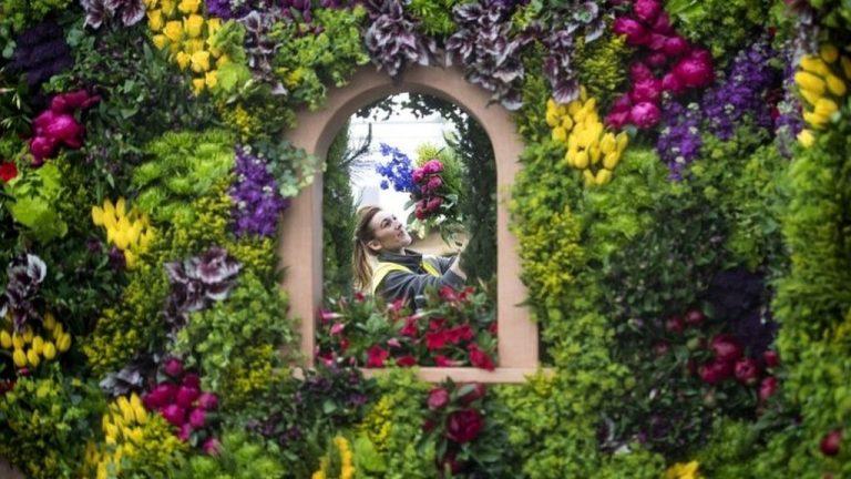 Chelsea Flower Show éste año podrás verlo desde casa