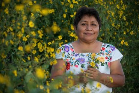 """""""La guardiana de las abejas"""", o """"Dama de la miel"""" gana el premio Nobel del medio ambiente 2020"""
