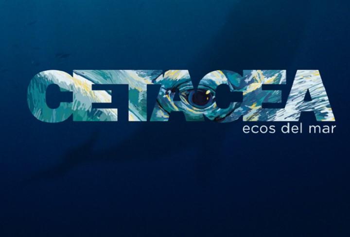 Cétacea, ecos del mar